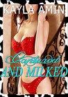 Captured And Milked: Hucow Erotica
