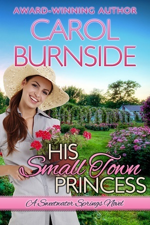 His Small Town Princess by Carol Burnside