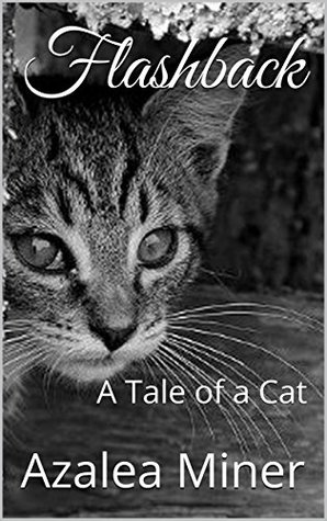 Flashback: A Tale of a Cat