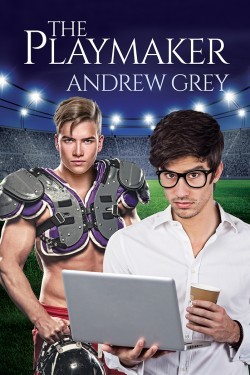 Release Day Review: The Playmaker by Andrew Grey