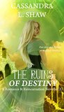 The Ruins of Destiny: Romance & Reincarnation Novella