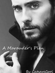 A Marauder's Plan (A Marauder's Plan, #1)