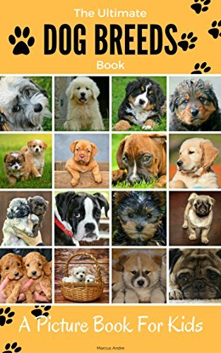 The Ultimate Dog breeds book, A picture book for kids.