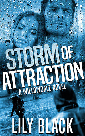 Storm of Attraction (Willowdale, #1)
