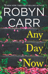 Any Day Now (Sullivan's Crossing, #2)