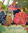 The English Winemaker