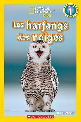 Les Harfangs Des Neiges (Niveau 1)
