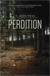 Perdition (A Nell McGraw Investigation, #2)