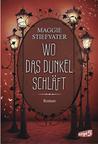 Wo das Dunkel schläft by Maggie Stiefvater