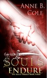 Souls Endure (The Souls Trilogy Book 3)