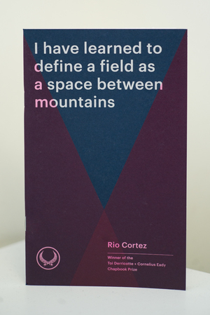 I Have Learned to Define a Field as a Space Between Mountains