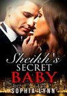 Sheikh's Secret Baby: Babies & Sheikhs Book 2 (Babies and Sheikhs)