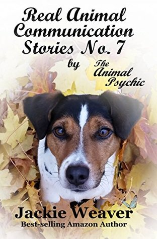 real-animal-communication-stories-no-7-by-the-animal-psychic