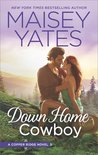 Down Home Cowboy (Copper Ridge, #8)