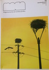 Maca - Magazine de Arte de Coimbra & Afins - 04 Dez/Fev (2008)