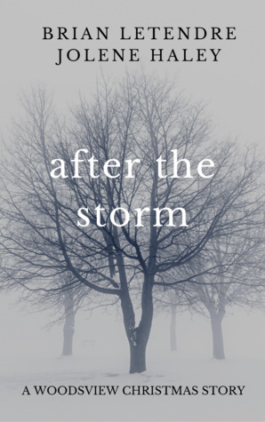After the Storm (The Woodsview Murders, #1.5)
