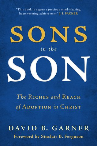 Sons in the Son: The Riches and Reach of Adoption in Christ (ePUB)