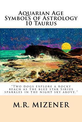 Aquarian Age Symbols of Astrology: 10 Taurus: Two Dogs Explore a Rocky Beach as the Blue Star Sirius Sparkles in the Night Sky Above.