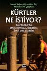 Kürtler Ne istiyor? Kürdistan'da Etnik Kimlik, Dindarlık, Sınıf ve Seçimler