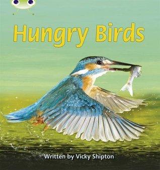 Phonics Bug Non-Fiction Set 23 Hungry Birds