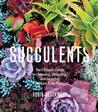 Succulents by Robin Stockwell