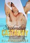 Stepbrother Castaway (Stepbrothers Club, #1)