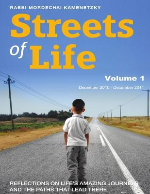 Streets of Life Collection Vol. 1 2011: Reflections on Life's Amazing Journeys and the Paths That Lead There