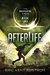 Afterlife (The Undermountai...
