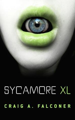 Sycamore XL