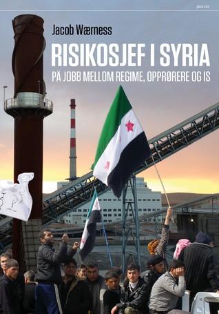 Risikosjef i Syria. På jobb mellom regime, opprørere og IS