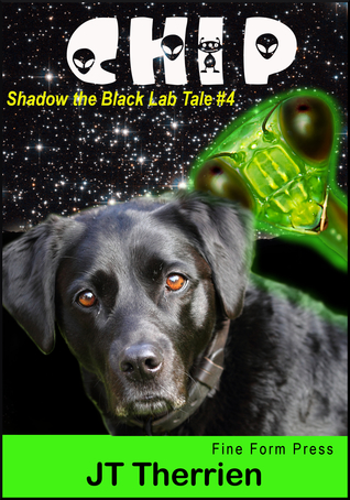 chip-a-shadow-the-black-lab-tale-4