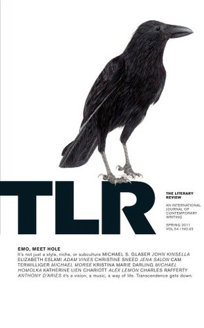 The Literary Review: Emo, Meet Hole