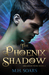 The Phoenix Shadow