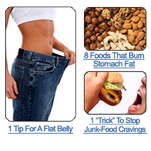 The 3 Week Diet System - How To Lose 10 Pounds In A Week: how to lose weight fast, The 14-Day Rapid Fat Loss Diet