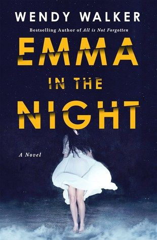 Image result for Emma in the Night by Wendy Walker