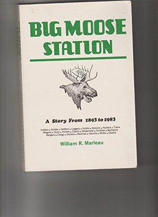 Big Moose Station