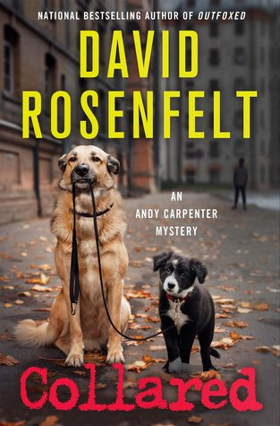 Collared (Andy Carpenter, #16)