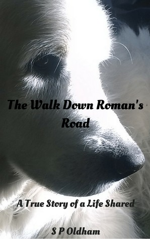 The Walk Down Roman's Road: A Story of a Life Shared