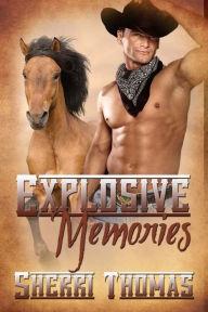 Descargar manuales en pdf en línea Explosive Memories