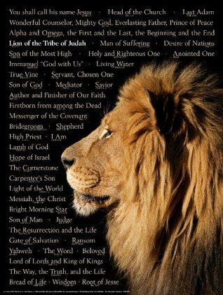 Lion of Judah Wall Chart (Laminated): Names of Christ
