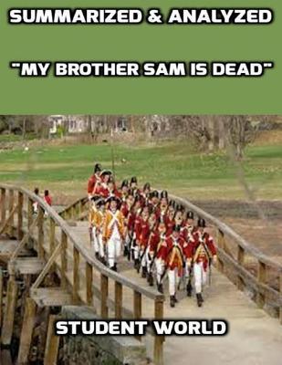 "Summarized & Analyzed ""My Brother Sam Is Dead"""