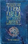Het Zilveren Labyrint by Peter DeWillis