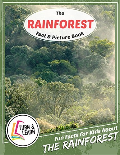The Rainforest Fact and Picture Book: Fun Facts for Kids About Rainforest