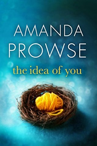 Image result for the idea of you amanda prowse