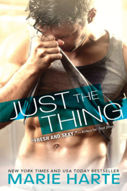Just the Thing (The Donnigans, #2)