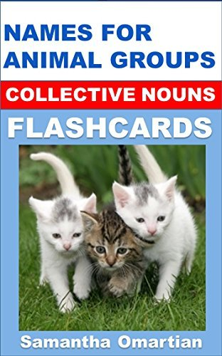 Flashcards: Names for groups of animals (collective nouns)