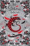 Třetí stříbrná kniha snů (Silber, #3)