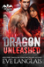Dragon Unleashed (Dragon Point, #3) by Eve Langlais