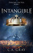 Intangible (Piercing the Ve...