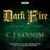 Shardlake: Dark Fire: BBC R...